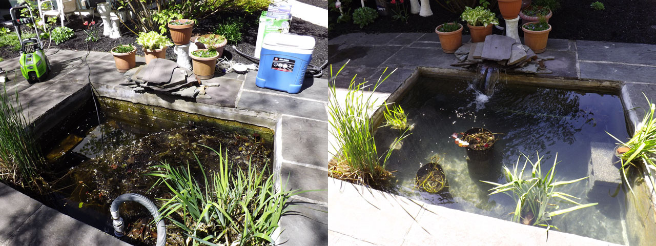 Pond cleaning service new cumberland pa york pa for Pond cleaning services
